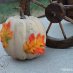 Fall Craft: Rustic Painted Pumpkin