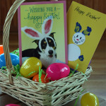 Easter Craft – Fingerpaint Bunnies for Toddlers #EasterValue #cbias