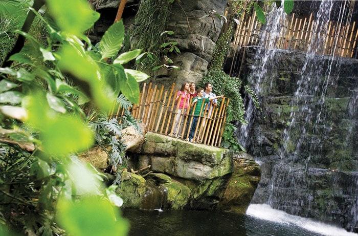 Omaha-Henry-Doorly-Zoo-Rainforest