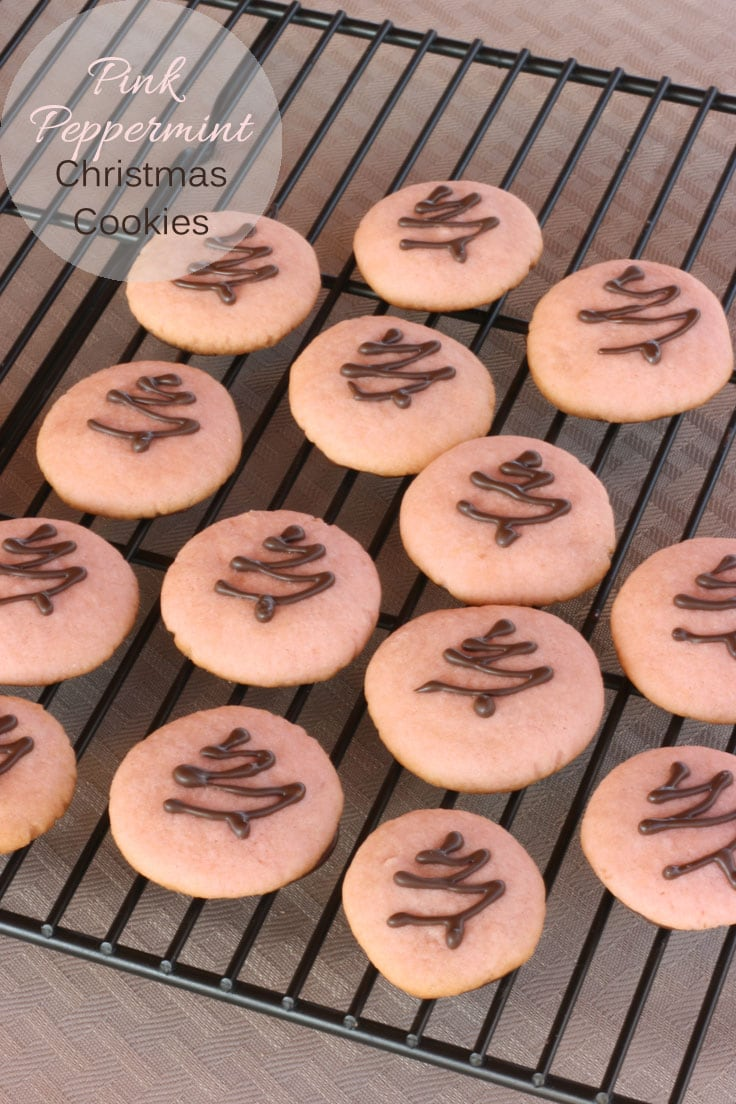These pink peppermint Christmas cookies are a bite-sized cookie that tastes very similar to Girl Scout Cookies.