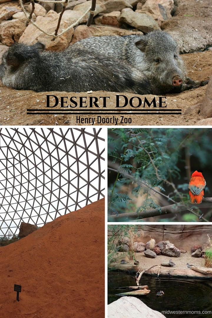 The Desert Dome at the Henry Doorly Zoo in Omaha NE
