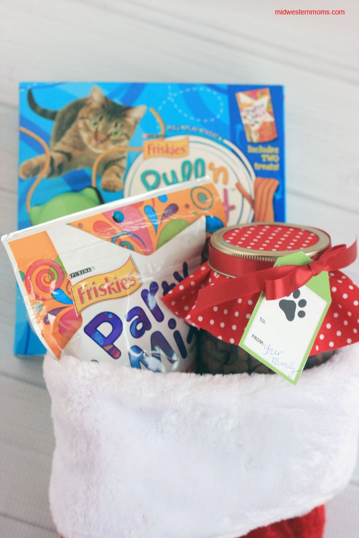 Christmas Stocking full of Treats for the cat.
