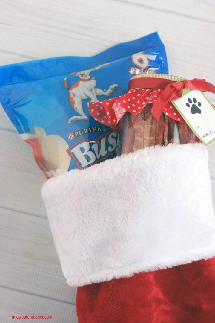 Christmas Stocking for our Dogs! Easy to make Christmas Treat Jar for the Dogs!