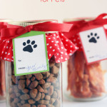 Christmas Treat Jar for Pets