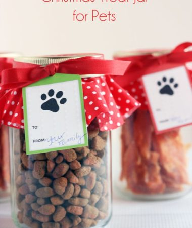Don't forget your pets this Christmas! Make sure to make them a cute Christmas Treat Jar. Easy Tutorial!