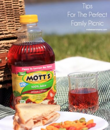 Tips for the Perfect Family Picnic.