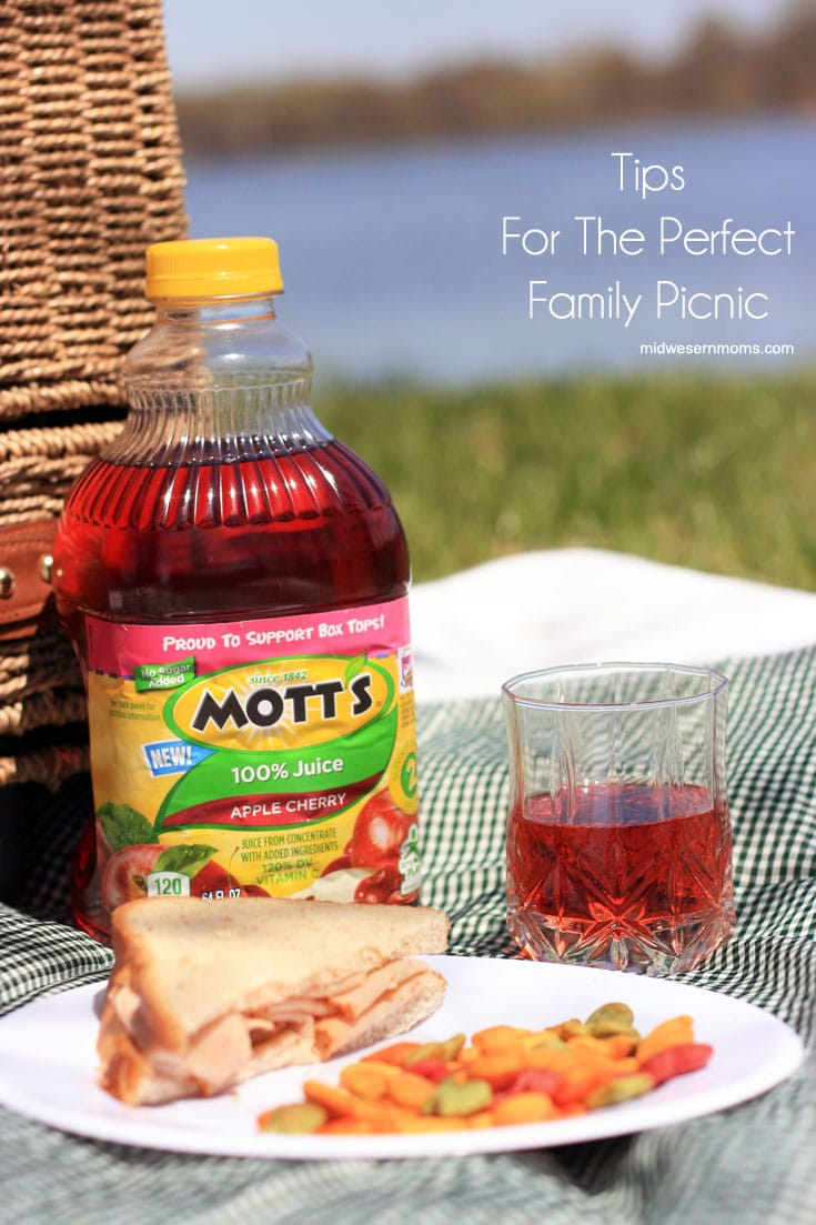 Tips for the perfect family picnic! Make sure you thought of everything for your picnic.