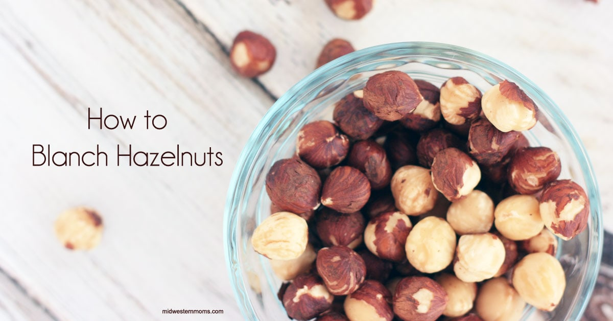 Blanched Hazelnut
