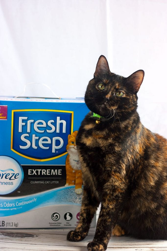 Achieve a happy odor free home with FreshStep with the Power of Febreze