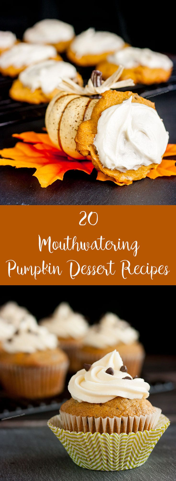 Celebrate with a little bit of pumpkin and spice with these delicious pumpkin dessert recipes. Everything from pumpkins cupcakes to pumpkin brownies.