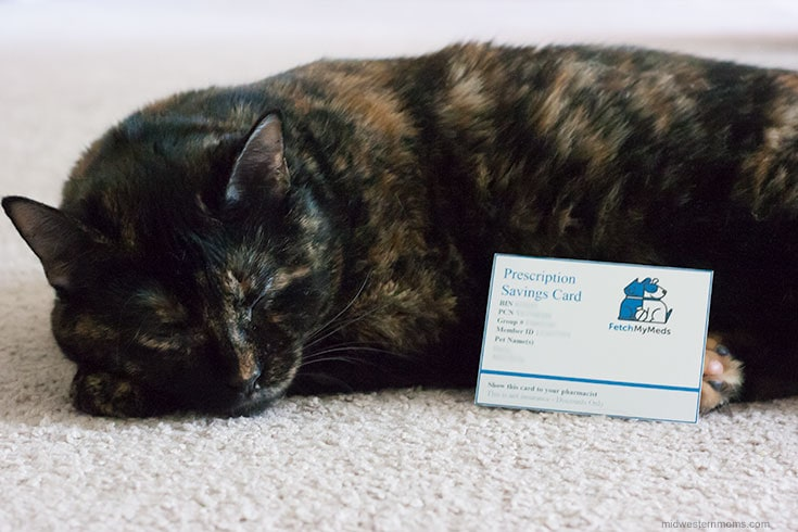 Miss Kitty with her Fetch My Meds Card