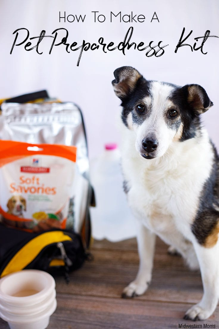 When natural disaster strikes, you have little time to react. Be prepared. Make a Plan. Create a Pet Disaster Preparedness Kit. #pets #petprepared #blogpaws